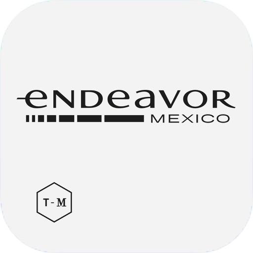 Endeavor VI