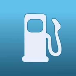Gasoline Consumption - Vehicle Expenses Under Control