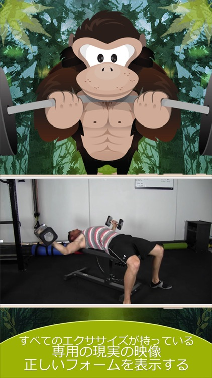 Gorilla Weight Lifting: Bodybuilding, Powerlifting, Strongman, and Strength Training to get Swole! screenshot-4