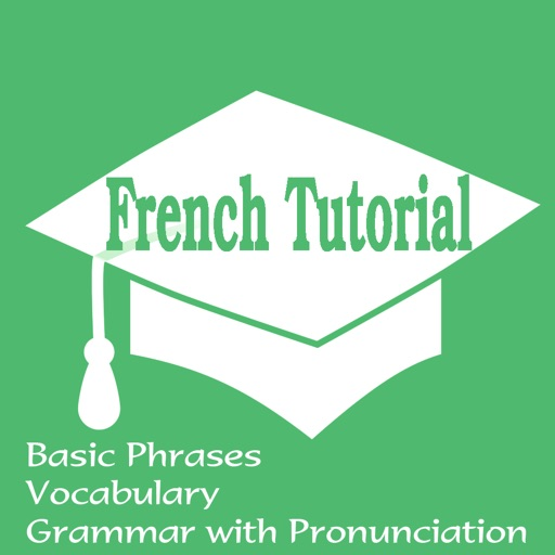 French Tutorial: Basic Phrases, Vocabulary and Grammar with