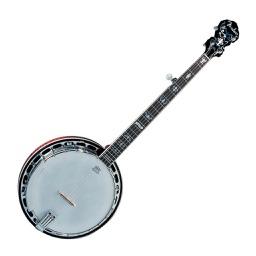 Virtual Banjo