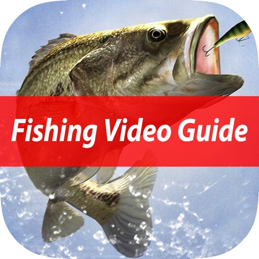 Easy Beginner's Fishing School - Best Basic Video Guide & Tips For Learn Catching Fresh Water Fish To Sea