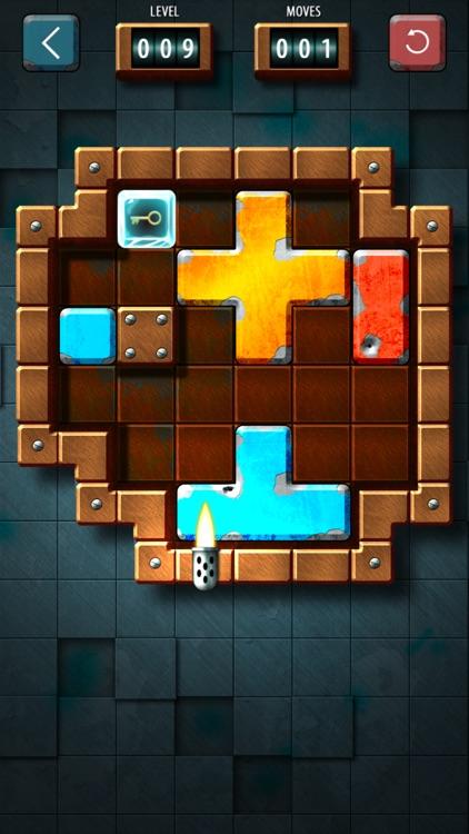 Slide Tetromino FREE screenshot-4