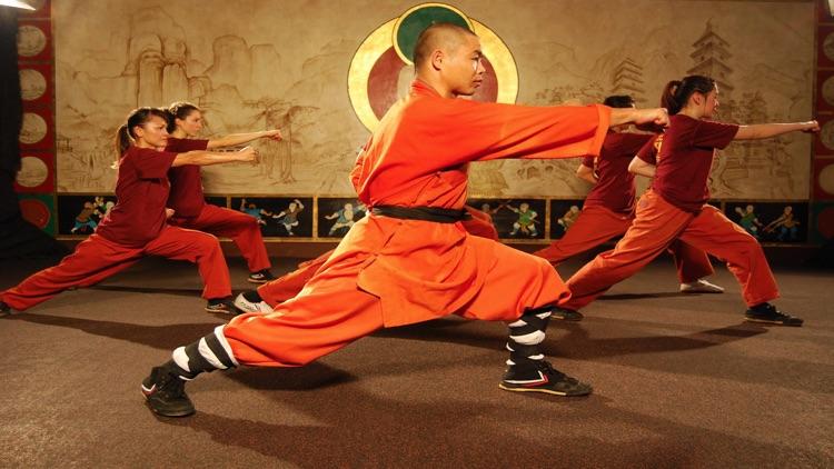Shaolin Kung Fu Expert screenshot-4