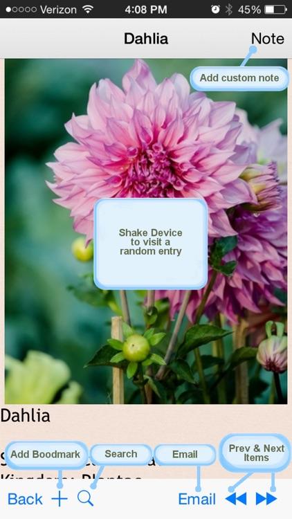 Flowers Encyclopedia Plus+