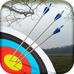 Archery Master 3D Advance
