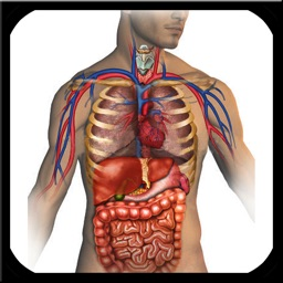 Atlas of Anatomy for iPad