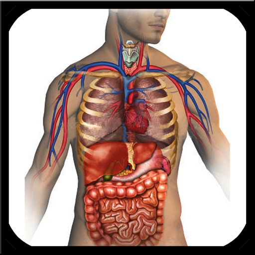 Anatomie & Physiologie Animationen - App Store Revenue & Download ...