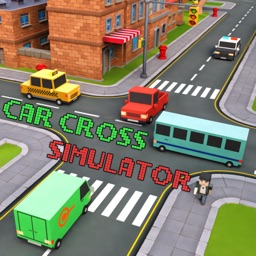 Car Cross Simulator