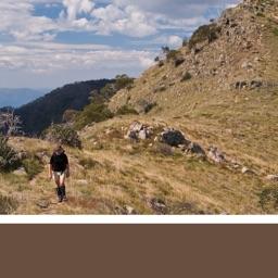 Buller-Howitt Outdoor Recreation Guide
