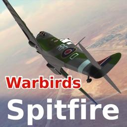 Warbirds Spitfire (lite)