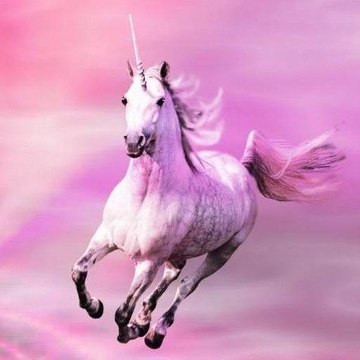 Rainbow Unicorn Wallpapers HD - Cool Pony Horses