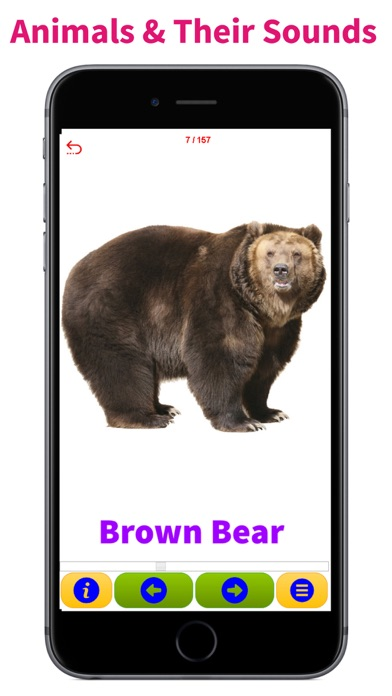 Animals & Animal Sounds Kids Toddlers Zoo App Paid