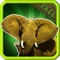 Learn Animal Sounds is an application for youngsters