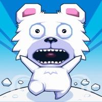 Codes for Roller Polar Hack