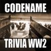 CODENAME: TRIVIA WW2 Icon