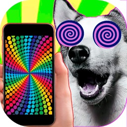 Hypnosis for dogs and cats optical illusions prank