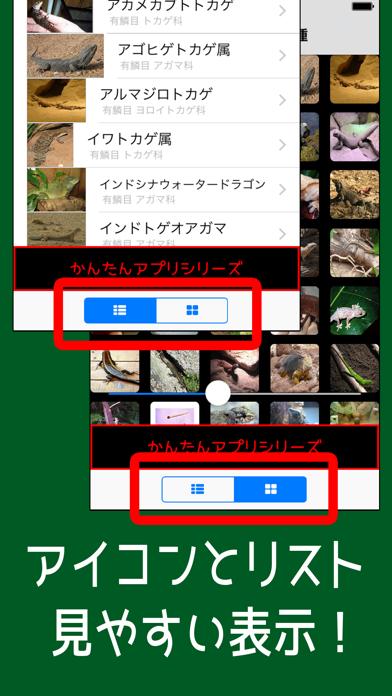 とかげ図鑑 世界の品種 =トカゲ125種類=のおすすめ画像4