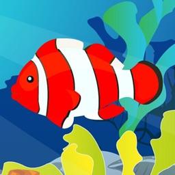 大鱼吃小鱼经典美丽版-深海小鱼成长历程-小鱼慢慢变大主宰海底