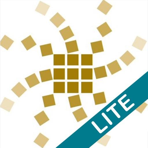 Unity Core Lite