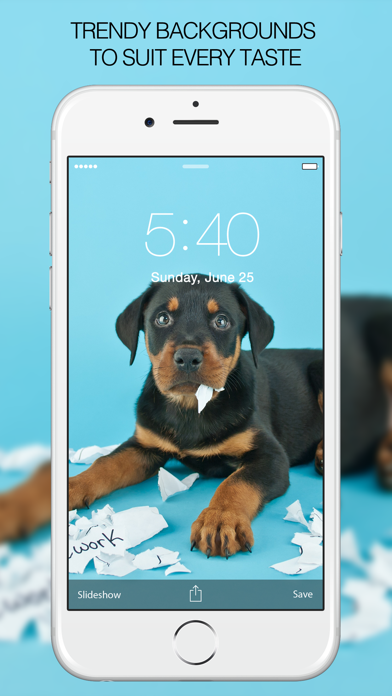 Puppy Wallpapers – Cute Puppy Pictures & Images screenshot four
