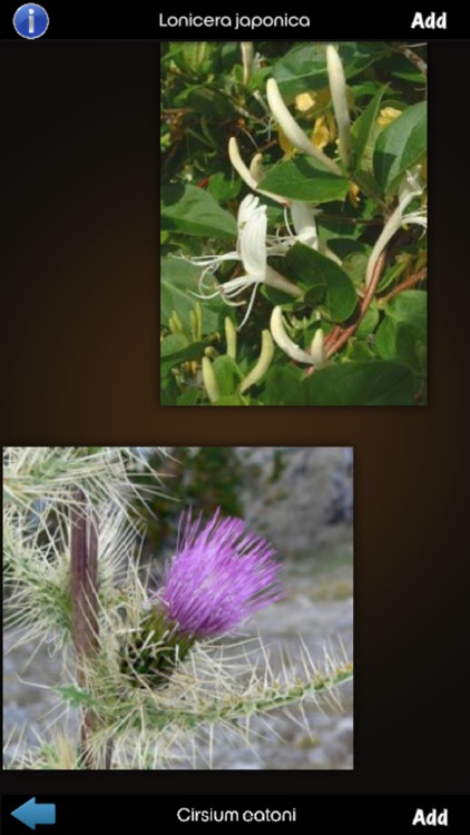 Medicinal Plants Encyclopedia screenshot-0