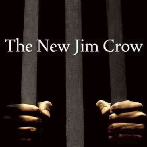 Quick Wisdom from The New Jim Crow:Practical Guide