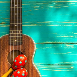 Ukulele Lessons - Learn to Play Ukulele
