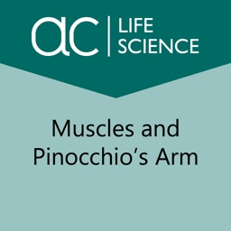 Muscles and Pinocchio's Arm