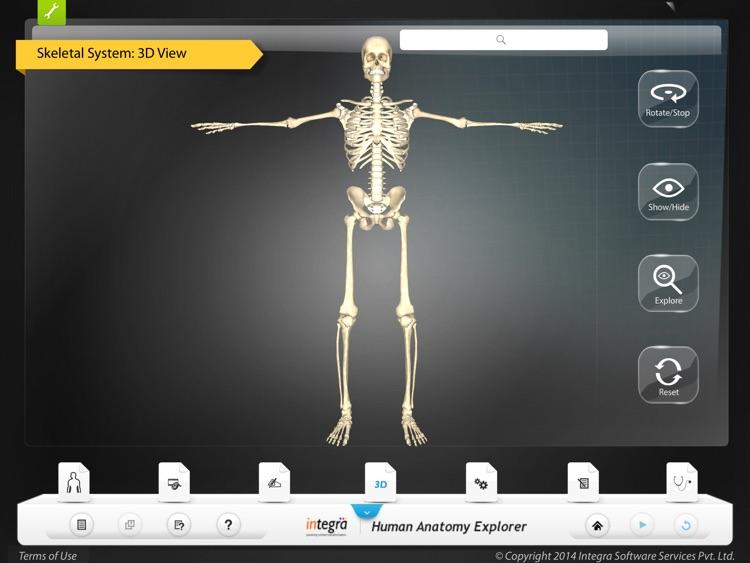 Human Anatomy Explorer Skeletal System screenshot-3