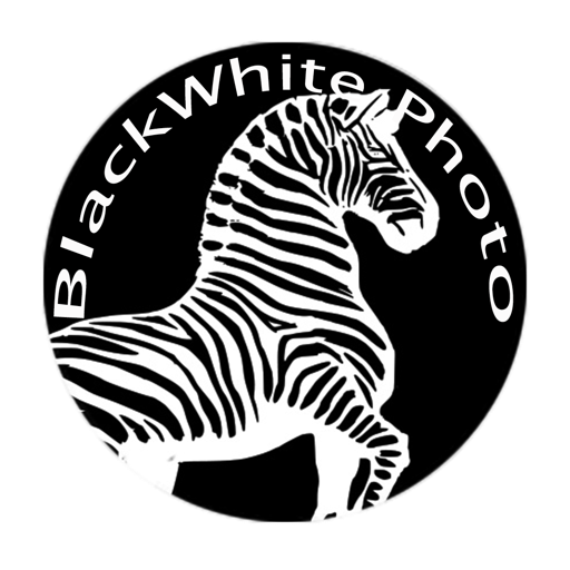 BlackWhite Photos