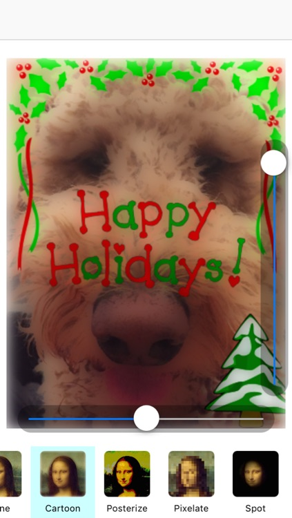 Christmas Cards - Create Your Holiday Message
