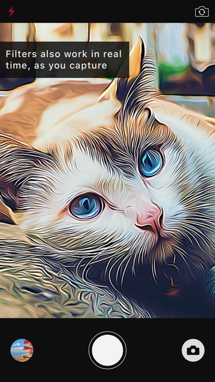 Visionn - Real Time Artistic Photo & Video Effects screenshot-4