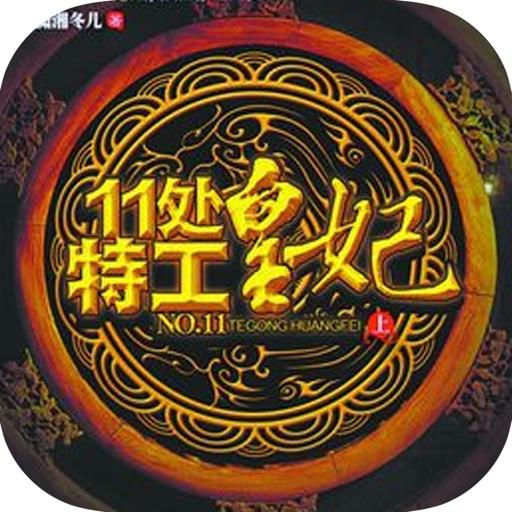 赵丽颖、林更新电视剧原著「11处特工皇妃」