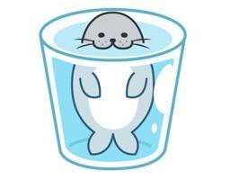 Daisy The Little Seal