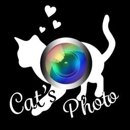 にゃんかめ Silent Camera 〜猫のためのデコアプリ〜