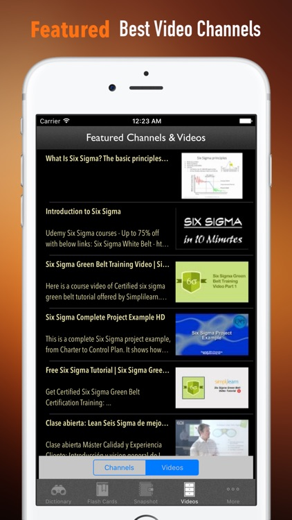 Six Sigma Guidance|Glossary and Free Video Lessons