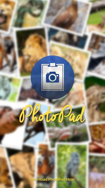 Photopad - Remembering Moments With A Photo Diary In Your Pocket screenshot-3
