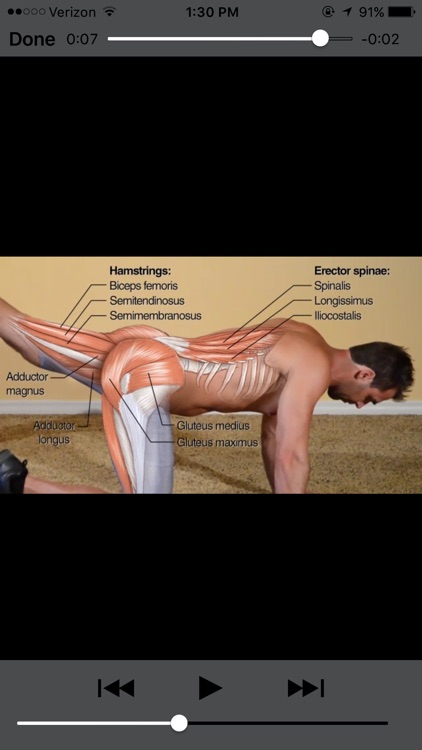 Bodyweight Training Anatomy screenshot-3