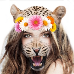 Animal Face Changer Camera Stickers