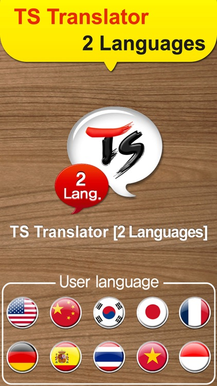TS 2Lang Translator