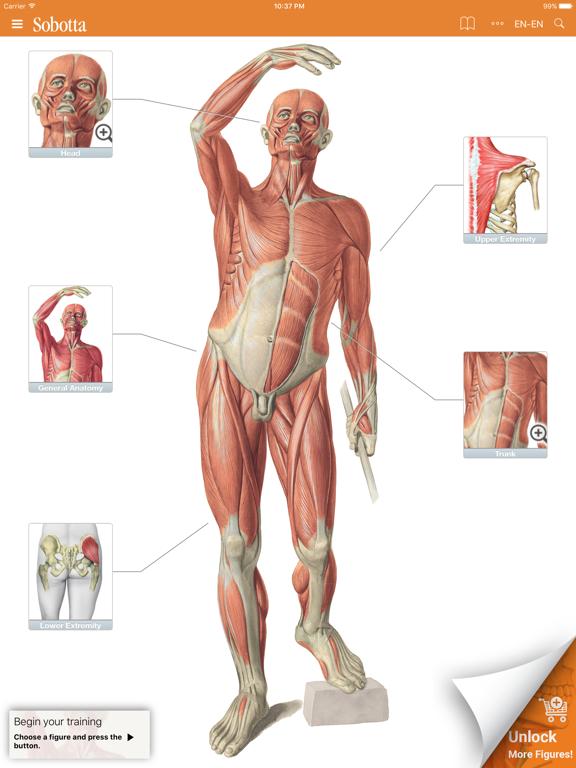 Sobotta Anatomyのおすすめ画像1