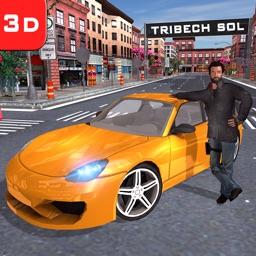 Driving School Sim Game
