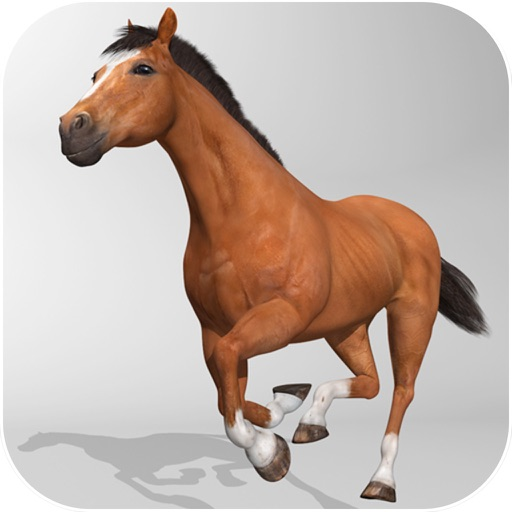 Horse Simulator 3D - Horseback Riding iOS App