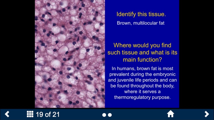 Histology Complete - SecondLook screenshot-4