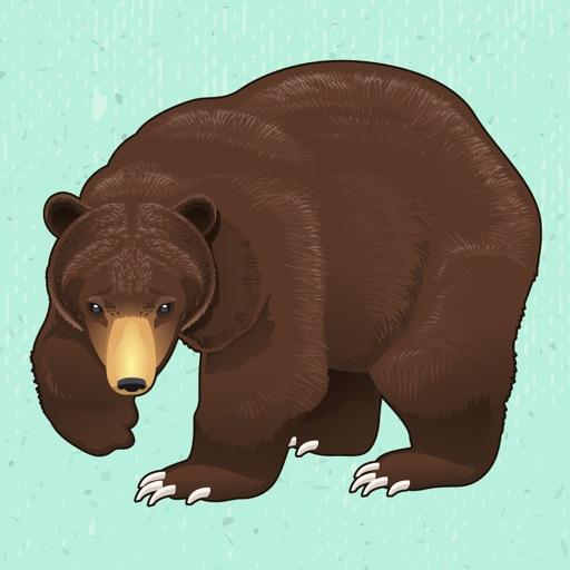 Fun with Bear - Angry Bear in Jungle