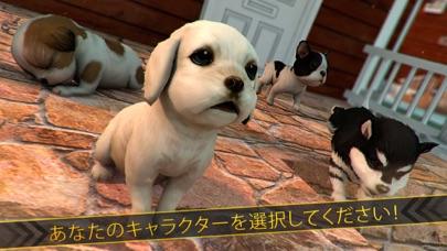 かわいい 犬 ねこ 大戦争 - シティ 子犬 白猫 ラッシュ紹介画像3