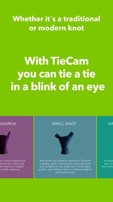 TieCam屏幕截图5
