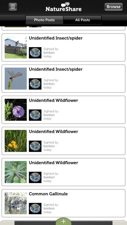 Audubon Birds of Central Park screenshot-4