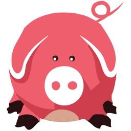 Pig1000